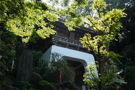 ③江ノ島の海を表現した御朱印帳に一目惚れ!江島神社(神奈川県藤沢市)