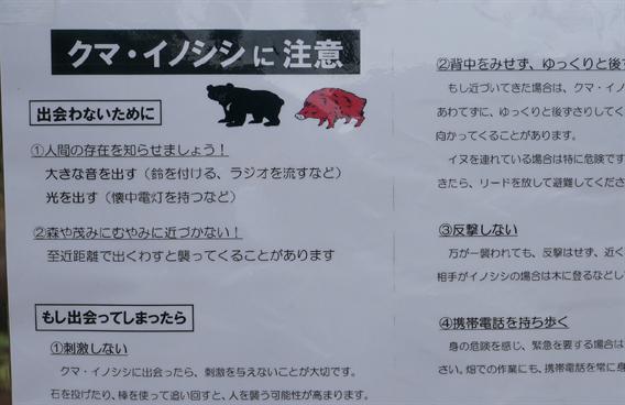 """③大山を冠する""""冠大明神"""" 比々多神社【神奈川県伊勢原市】"""