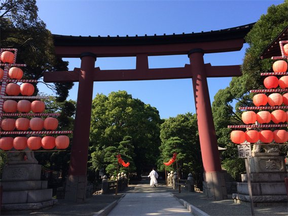 ②湘南アヒルの楽園?!平塚八幡宮(神奈川県平塚市)