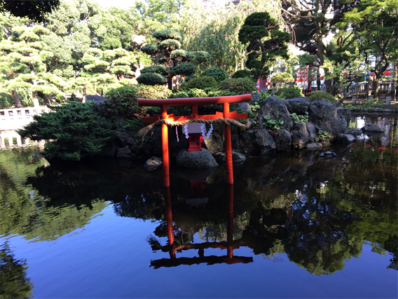 ⑤湘南アヒルの楽園?!平塚八幡宮(神奈川県平塚市)