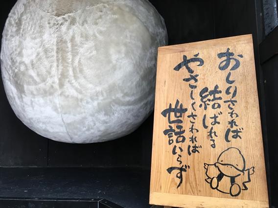 ②巣鴨の子育て稲荷と大鳥神社(東京都文京区千石)